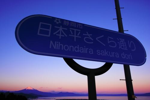 Nihondaira_sakura_dori